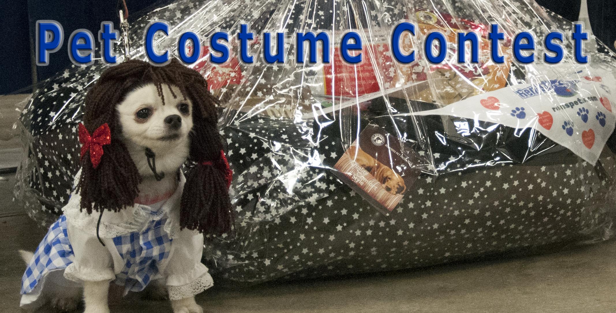 dog costume 2