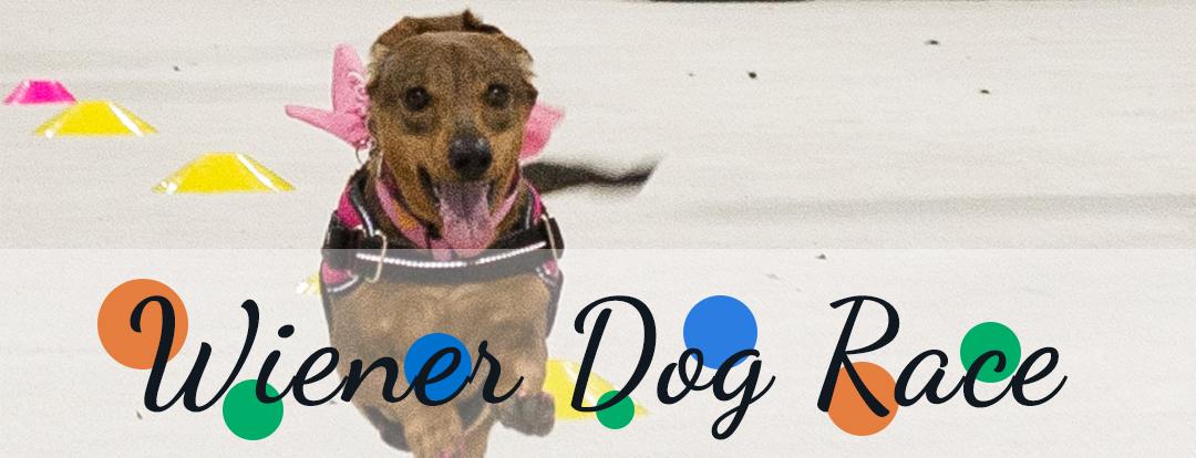 KW Pet Expo Wiener Dog Race