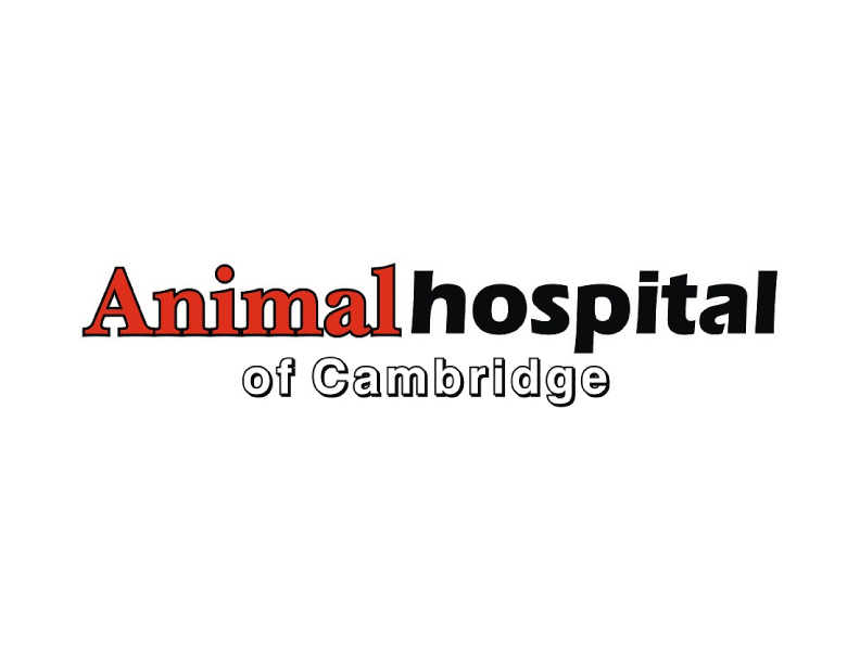 Animal Hospital of Cambridge - Booth 321