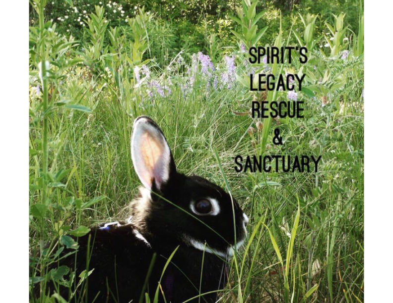 Spirit's Legacy Rescue & Sanctuary - Booth 514